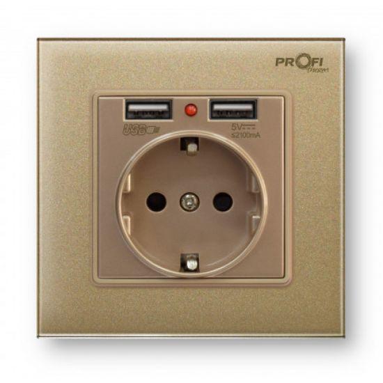 Розетка с заземлением и 2 USB Profi therm Singl Pure Gold